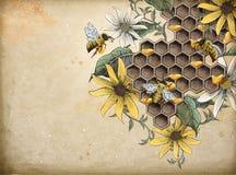 Honungbi och bikupa stock illustrationer