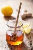 Honungcitron och ingefära fotografering för bildbyråer