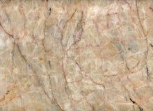 Honungonyx Arkivbild
