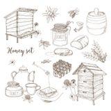 Honungproduktion, biodling eller biodlinguppsättning - honungskaka, konstgjorda bikupor, träskopa, bin, tekannahand som in dras stock illustrationer