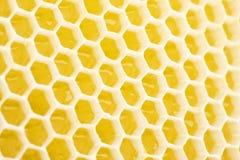 honungskaka Royaltyfri Fotografi