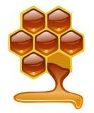 Honungskaka med honung Arkivfoton