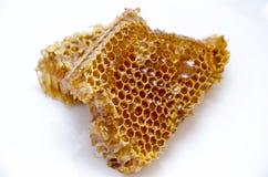 Honungskaka med honung Royaltyfria Bilder
