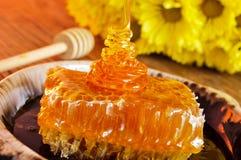 Honungskaka med honung Arkivfoto