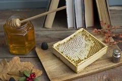 Honungskaka med honung Fotografering för Bildbyråer