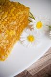Honungskaka med tusenskönor på plattan Fotografering för Bildbyråer