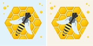 Honungskaka och bi Arkivfoto