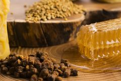 Honungskaka, pollen och propolis royaltyfria foton