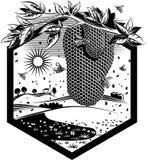 Honungskaka som I hänger från en filial Arkivfoto