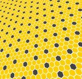 Honungskaka - textur Det kan vara nödvändigt för kapacitet av designarbete Arkivfoton