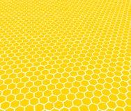 Honungskaka - textur Det kan vara nödvändigt för kapacitet av designarbete Royaltyfria Bilder