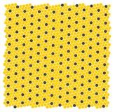 Honungskaka - textur Det kan vara nödvändigt för kapacitet av designarbete Arkivbild