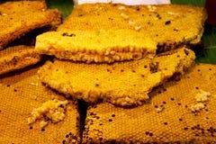 Honungskakan av biet royaltyfria bilder
