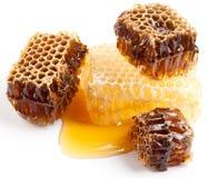 honungskakor Arkivbild