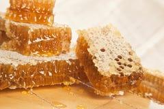 Honungskakor Fotografering för Bildbyråer