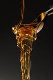 honungsmältning Arkivbild