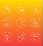 Honungvitsymboler Arkivfoto