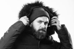 Hood adds warmth and weather resistance. How to choose best winter jacket. Winter season menswear. Weather resistant. Jacket concept. Man bearded stand warm royalty free stock photo