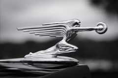 Hood ornament on antique Packard automobile. Royalty Free Stock Images