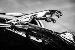 Hood ornament (Jaguar in the jump) of the Jaguar Mark 2 Stock Photography