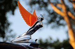 Hood ornament in mysterious location Royalty Free Stock Photos