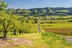 Hood River landscape and farms Oregon state. Hood River farmlands and landscape in Oregon state royalty free stock photo