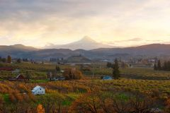 Hood River Oregon at Sunset in Fall. Hood River and Mount Hood during sunset in fall season stock photography