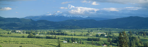Hood River Valley. And Mount Hood, Oregon stock photography