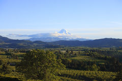 Hood River valley landscape & My. Hood, Oregon. Royalty Free Stock Images