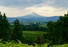 Hood River Valley and Mount Hood. Photo taken on one Spring day out on a photo excursion near Hood River, Oregon royalty free stock photography