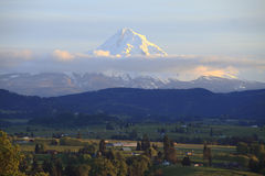 Hood River valley & mt. Hood in the distance. Royalty Free Stock Images