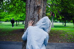 Hooded person hiding behind a tree royalty free stock images