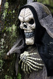 Hooded Skeleton Stock Image