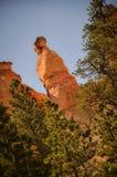 Hoodoo επάνω από τα δέντρα στο φαράγγι του Bryce Στοκ εικόνες με δικαίωμα ελεύθερης χρήσης