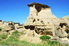 Hoodoo and sandstone field Royalty Free Stock Photography