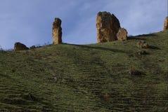 Hoodoos вершины холма Стоковые Фотографии RF