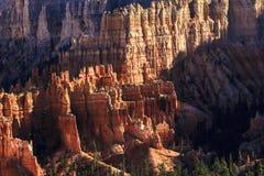 Hoodoos каньона Bryce Стоковое Фото