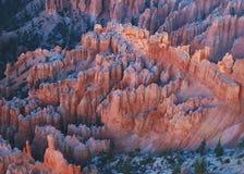 hoodoos каньона bryce Стоковое Изображение