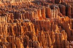 HooDoos национального парка каньона Bryce Стоковые Фото