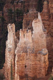 Hoodoos. Rock formation in Bryce Canyon National Park, Utah, USA royalty free stock photography