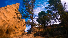 Hoodoos. Banff sky color filter tree Stock Images