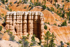 Hoodoos of Bryce Royalty Free Stock Photo