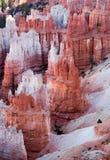 Hoodoos of Bryce Canyon Royalty Free Stock Image