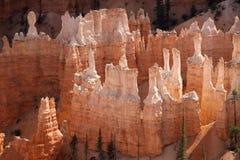 Hoodoos at Bryce Canyon royalty free stock photos