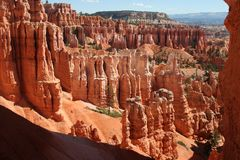 Hoodoos, bryce canyon national park. Hoodoos in bryce canyon national park Royalty Free Stock Photo