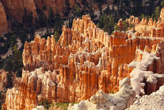 Hoodoos in Bryce Canyon National Park Royalty Free Stock Images