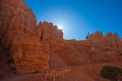 Hoodoos in Bryce canyon national Park, Utah. Orange and pink hoodoos lit by morning light in Bryce canyon national Park, Utah royalty free stock image