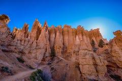Hoodoos in Bryce canyon national Park, Utah. Orange and pink hoodoos lit by morning light in Bryce canyon national Park, Utah royalty free stock photography