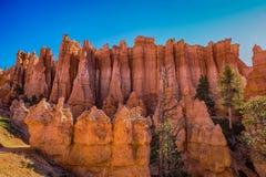Hoodoos in Bryce canyon national Park, Utah. Orange and pink hoodoos lit by morning light in Bryce canyon national Park, Utah stock photos