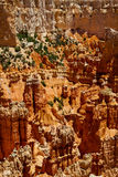 Hoodoos in Bryce Canyon National Park, Utah Stock Photos